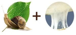 состав улиточного крема SnailMe